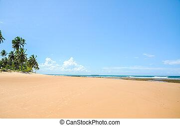 Beach of Taipu de Fora, Bahia (Brazil)