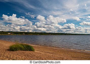 Beach of the lake
