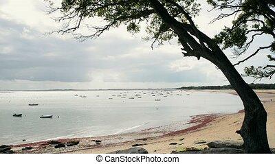Beach of the Sableaux, Noirmoutier