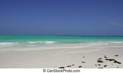 beach on indian ocean shore in zanzibar, tanzania - travel,...