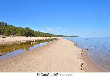 Beach on Ladoga lake at morning.