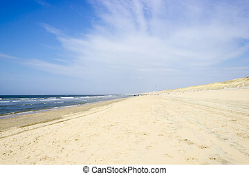 Beach on North Sea, the Netherlands