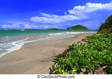 Beach on Saint Lucia
