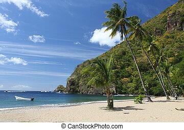 Beach on St. Lucia in the Caribbean