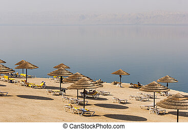 Beach on the Dead sea, one of the world's saltiest lake,...