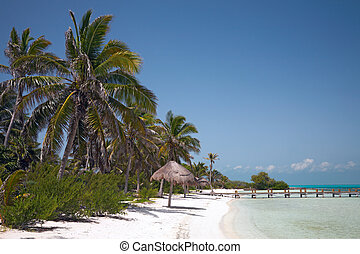 beach on the Isla Contoy, Mexico