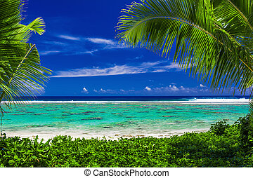 Beach on tropical island during sunny day framed by palm trees