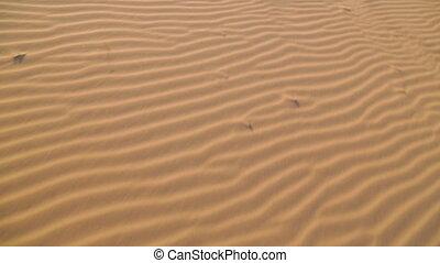 Beach Sand Ripples, Qld Island Beach, Australia