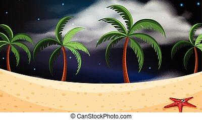 beach scene at night
