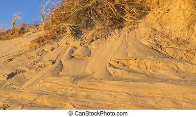 Beach scene with sun beams