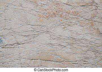 Beach Stone 1