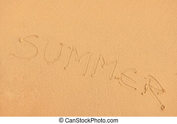 beach summer background
