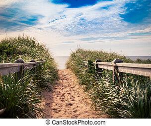 beach trail prince edward island - Trail on the sand dune in...