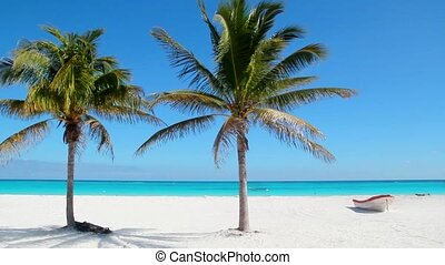 Beach tropical in Caribbean beach - Beach tropical in...