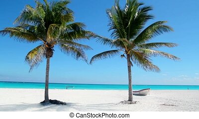 Beach tropical in Caribbean beach