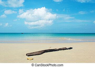 beach tropical sea