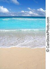 beach tropical vertical Caribbean turquoise sea