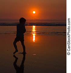 Beach Twilight Silhouette