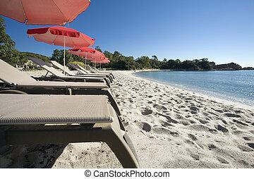 beach umbrella - Seasonal and Holidays: sun umbrella on the...