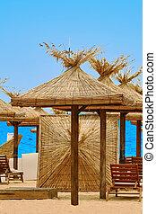 Beach Umbrellas and Lounge Chairs on the Sea Coast