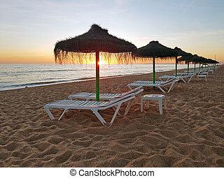 Beach umbrellas at sunset on Aruba island in the Caribbean Sea