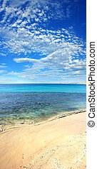 Beach Vertical