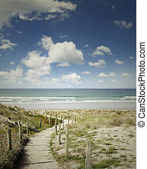 Beach view - Boardwalk leading to beach scenery