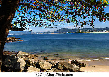 Beach view under a tree in Niteroi, Rio de Janeiro, Brazil