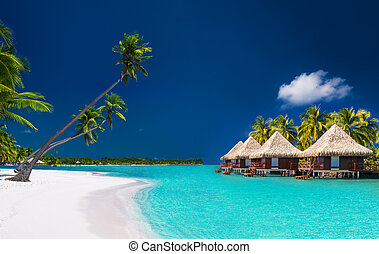 Beach villas on a tropical island with palm trees and white beach
