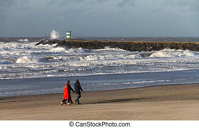 Beach walk waves