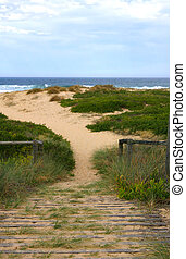 Wooden pathway over sand to preseve coastal sand dune and environment