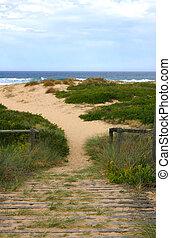 Beach Walk - Wooden pathway over sand to preseve coastal...
