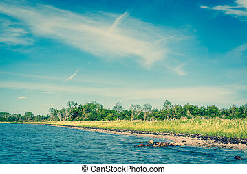 Beach with green grass and blue water