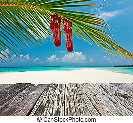 Beach with palm tree at christmas