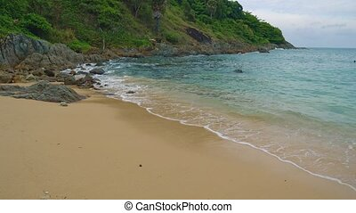 beach without people on a tropical island. vacation and travel. palms and warm sea