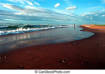Beach2 - Beach after a storm at Iles de la Madeleine, Quebec