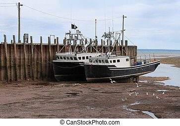 Beached boats in Alma, New Brunswick - Beached, fishing...