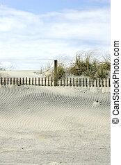 beachside sand dunes