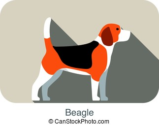 Beagle dog breed flat icon design