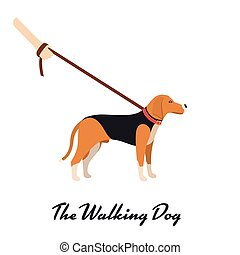 Beagle Dog with a leash - Vector color serious dog Beagle breed on the walk