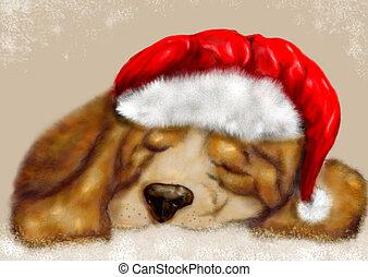 beagle sleeping
