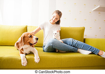 beagle, turkish angora and their owner - pets are lying on ...