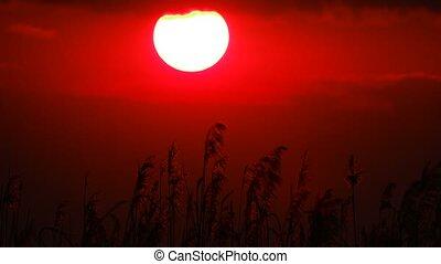 beams, закат солнца, солнце