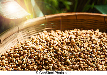 beans., jord, kaffe, struktur