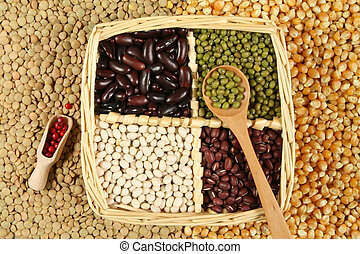 Beans - Various sorts of beans and cereals sorted in a...