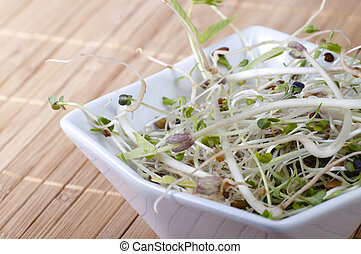 beansprouts in a bowl - Close up of mixed beansprouts in a...
