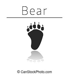 Bear animal track with name and reflection on white ...