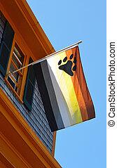 Bear Flag - A gay bear flag against a blue sky background