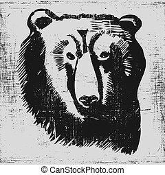 bear head hand drawn sketch grunge texture engraving style.
