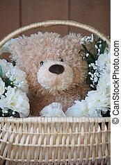 Bear in a basket.